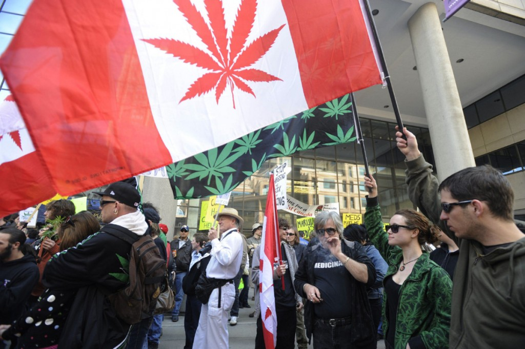 against legalization of marijuana in canada The legalization of marijuana is such a controversial topic because some are for it and some are against it people are for the legalization because of the great uses it has towards medicine, the money that could come from the taxation of legalized marijuana, and.